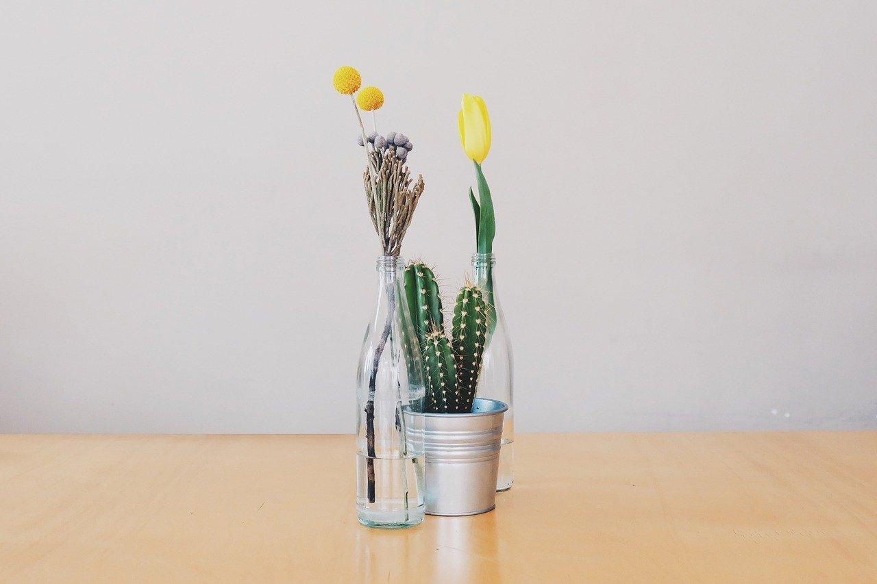 黄色いチューリップとサボテンとなにかの花