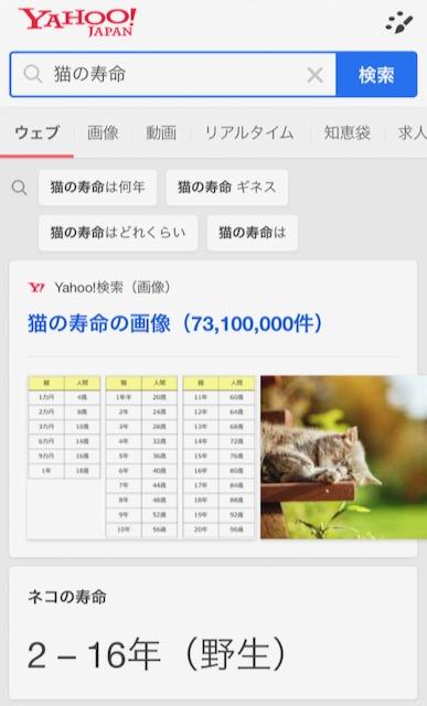 「猫の寿命」のナレッジカード・Yahoo検索版
